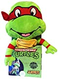 Jay At Play Teenage Mutant Ninja Turtles Seat Pets (Raphael)