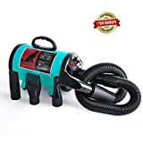 Pet Grooming Hair Dryer for Dog and Cats … (Dark green)