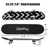 WhiteFang Skateboards for Beginners, Complete