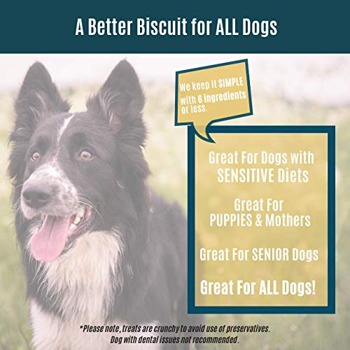 Benefit Biscuits Pumpkin Dog Treats - Certified Vegan All Natural Dog Biscuits 7oz