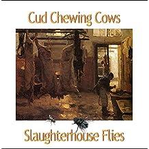 Slaughterhouse Flies