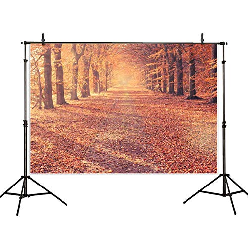 Allenjoy 7x5ft Autumn Scenery Deciduous Background 7x5ft Vinyl Deciduous Mountain Road Photography Backdrop Tree and Yellow Fall Leaves View Background Studio ()