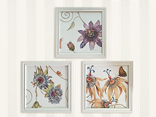Passion Flower Botanicals by Chuck (Flower Chucks)
