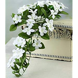 Factory Direct Craft Lovely Cascading Artificial Stephanotis Vine Spray for Home Decor, Floral Arranging, and Embellishing 24