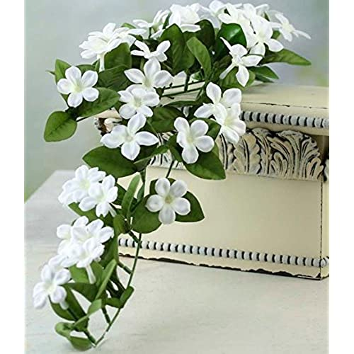 Factory direct silk flowers amazon factory direct craft lovely cascading artificial stephanotis vine spray for home decor floral arranging and embellishing mightylinksfo