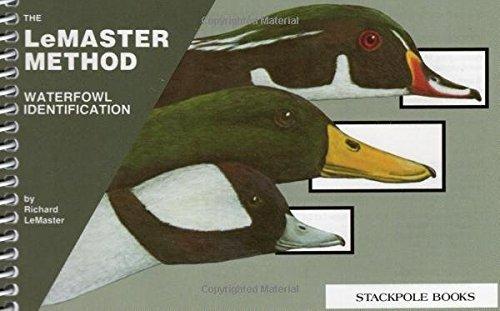(Waterfowl Identification: The LeMaster Method)