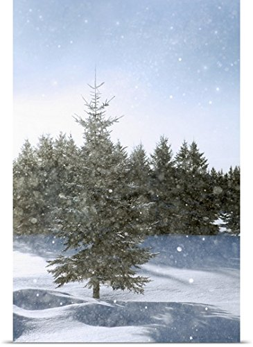 Susan Dykstra Poster Print Entitled Snow Flurries Falling In The Sunshine  Thunder Bay  Ontario  Canada