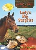 Lady's Big Surprise, JoAnn S. Dawson, 1402209967