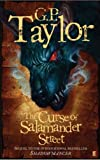 The Curse of Salamander Street (Shadowmancer)