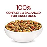 Purina Beneful Real Meat Dry Dog Food, Originals