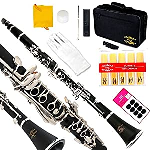 Glory B Flat Clarinet with Second Barrel, 11reeds,8 Pads cushions,case,carekit and more Black body with silver keys