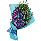 Floralbay Blue Orchids Fresh Flowers in Paper Wrapping (Bunch Of 12)
