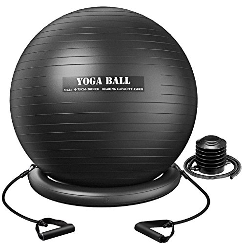 Homitt Exercise Yoga Ball, Gym Ball Anti Bust Stability Ball Set with Stability Ring, Resistance Bands, Foot Pump Improve Balance, Core Strength, Stay in Shape, Physical Therapy for Home, Office, Gym by Homitt