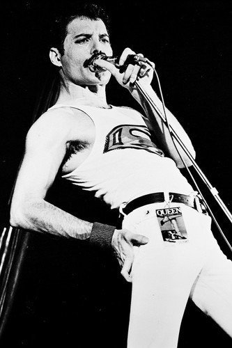 Queen B&W Poster Freddie Mercury Vest and Tight Pants Concert