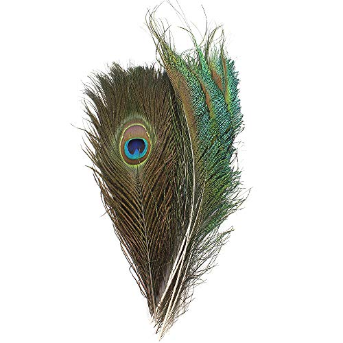 (Real Natural Peacock Feathers 10-12 inchs 10pcs and Peacock Sword Feathers 12-15 inchs 10pcs for DIY Craft,Wedding Decoration)