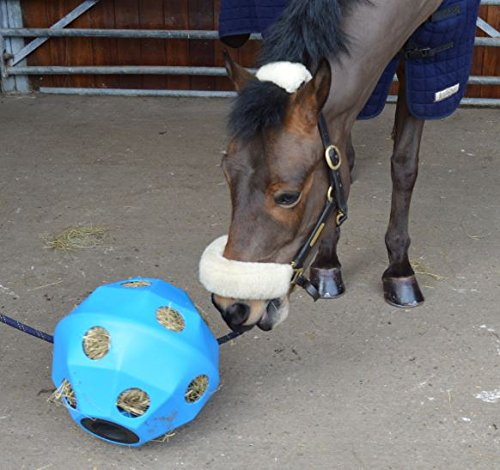 NATS Blue Equine Horse or Pony Hay Ball 75mm Holes
