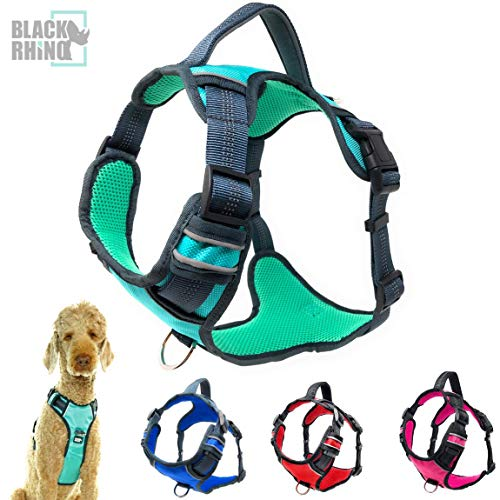 Black Rhino - The Comfort Dog Harness with Mesh Padded Vest for Small - Large Breeds | Adjustable | Reflective | 2 Leash Attachments on Chest & Back - Neoprene Padded Training Handle (Medium, Aqua/Gr)