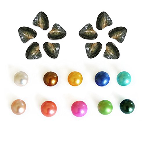 (10PC Pearl Oysters Freshwater Cultured Round with Love Wish Pearls 7-8mm Inside 10 Colors, Pearl Party Birthday Gift, Colored Pearl Cage Pendant Loose Beads)