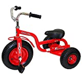 Gener8 Unisex Red Deluxe Tricycle, 3yrs and up by Product Gener8