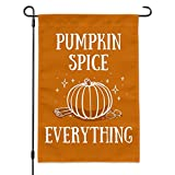 Cheap Graphics and More Pumpkin Spice Everything Garden Yard Flag with Pole Stand Holder