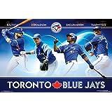 Toronto Blue Jays - Group 16 Poster Print (34 x 22)