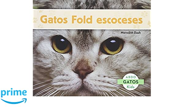 Gatos Fold escoceses (Gatos / Cats) (Spanish Edition): Meredith Dash: 9781629703060: Amazon.com: Books