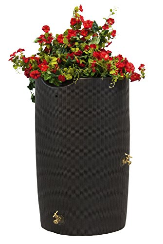 Good Ideas IMP-B50-DBR Impressions Bali Rain Saver Barrel, 50 Gallon, Dark Brown -