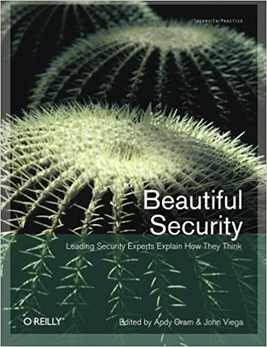 Beautiful Security Leading Experts Explain How They Think 1st Edition
