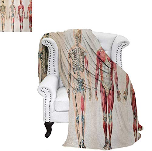 Warm Microfiber All Season Blanket Vintage Chart of Body Front Back Skeleton and Muscle System Bone Mass Graphic Print Artwork Image 70