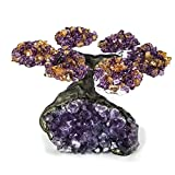 Astro Gallery Of Gems Small Amethyst with Citrine Gemstone Bonsai Tree (6 Petals) on Amethyst Matrix