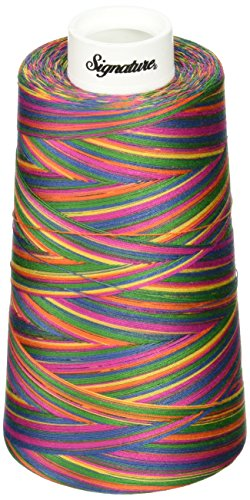 Signature 3 Ply Cotton Quilting Thread, 40wt/3000 yd, Variegated Tie Dye (Variegated Signature Quilting Thread)