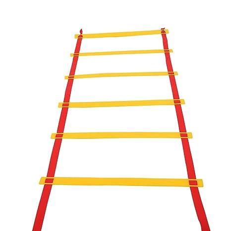 Alomejor Escalera de Agilidad, Ajustable para Baloncesto de fútbol ...