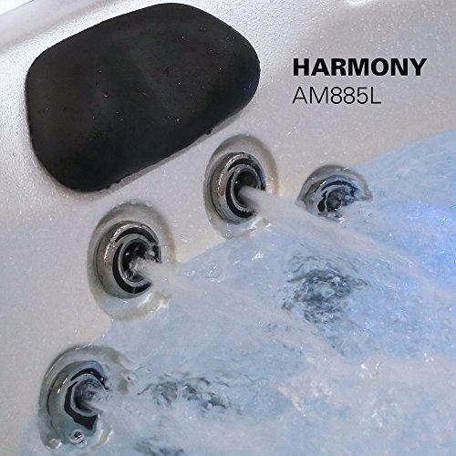 Dusk To Dawn Light Rural King: American Spas AM-885LG Harmony 6-Person Spa LED Handrail