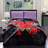 JML Soft Full/Queen Size Plush Fleece Bed/Throw Blankets-76X86Inch,4.9 Pounds (Queen,Black&Rose)