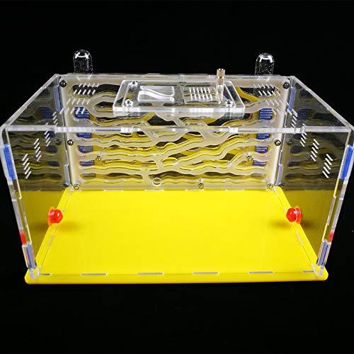 VistorHies - Ants Nest Workshop Acrylic Nest Plaster Nest Home D1 Ant farm by VistorHies (Image #3)