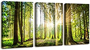 Moyedecor Art – 3 Pieces Wall Art Paintings Sunshine in…