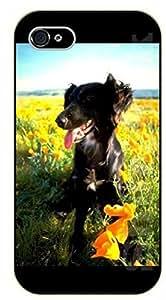 For SamSung Galaxy S4 Mini Case Cover Case Black dog, floral field - black plastic case / dog, animals, dogs