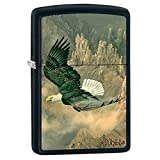 Zippo Blaylock Painting Bryce Canyon Eagle Lighter Custom Made