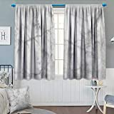 Anhounine Marble,Blackout Curtain,Fractured Lines Stained Grunge Surface Effects Ceramic Style Background Artful Motif,Thermal Insulating Curtain,Grey Dust,W63 x L63 inch
