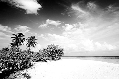 maldives ocean beach-Scenery - Art Print On Canvas Rolled Wall Poster - Black and