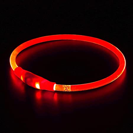 BSEEN LED Dog Collar, USB Rechargeable, Glowing pet Dog Collar for Night Safety