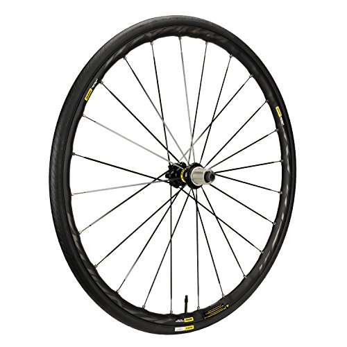 Mavic Ksyrium Rims (Mavic Ksyrium Elite Disc Rear Wheel - Closeout)