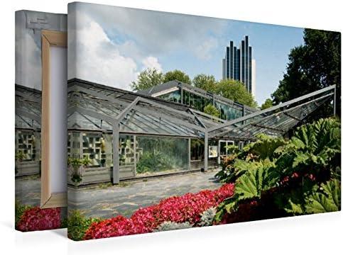CALVENDO Premium Lienzo 45 cm x 30 cm Horizontal, casa Tropical en el jardín botánico Hamburgo Imagen sobre Bastidor, Imagen Lista sobre Lienzo auténtico, impresión en Lienzo Orte Lugares: Steiner, Carmen: Amazon.es: