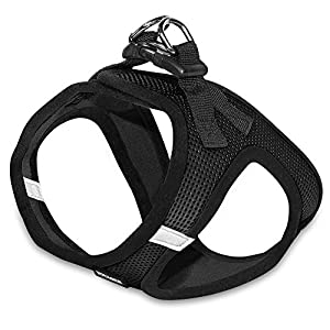 Voyager All Weather No Pull Step-in Mesh Dog Harness with Padded Vest, Best Pet Supplies, Medium, Black Base