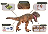 Lifeliko Tyrannosaurus Rex Toy Action Figure – Realistic Design Jurassic Park T-Rex Dinosaur Toy – Ideal Gift...