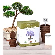 Nature's Blossom Bonsai Tree Seed Starter Kit - Grow 4 Bonsais From Seeds. Complete Bonzai Gardening Set W/ Organic Soil Mix, Biodegradable Planting Pots, Plant Labels & Guide. Indoor Garden Gift