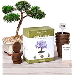 Nature's Blossom Bonsai Garden Seed Starter Kit - Easily Grow 4 Types of Miniature Trees Indoors: A Complete Gardening Set Organic Seeds, Soil, Planting Pots, Plant Labels & Growing Guide. Unique Gift
