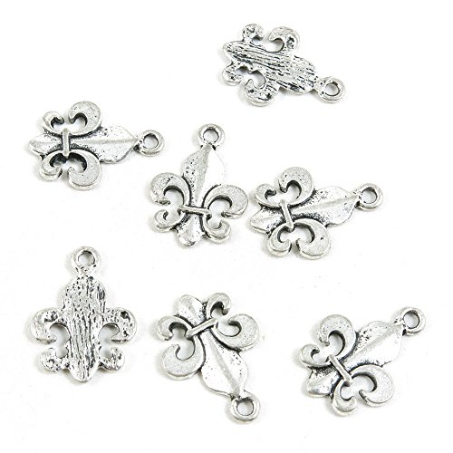 30 Pieces Antique Silver Tone Jewelry Making Charms Supply ZY0896 Fleur De Lis Iris Lily