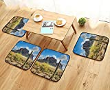 Leighhome Simple Modern Chair Cushions Decor Famous Canyon Cliff with Dramatic Cloudy Sky Southwest Terrain Place Nature Brown Reusable Water wash W27.5 x L27.5/4PCS Set