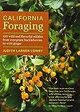 California Foraging, Judith Lowry, 1604694203